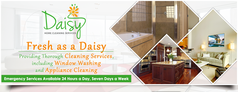 Home Cleaning, Commercial Cleaning, Daisy Home Cleaning Services, Minooka,  IL